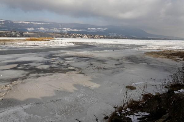 Marécages pris dans la glace