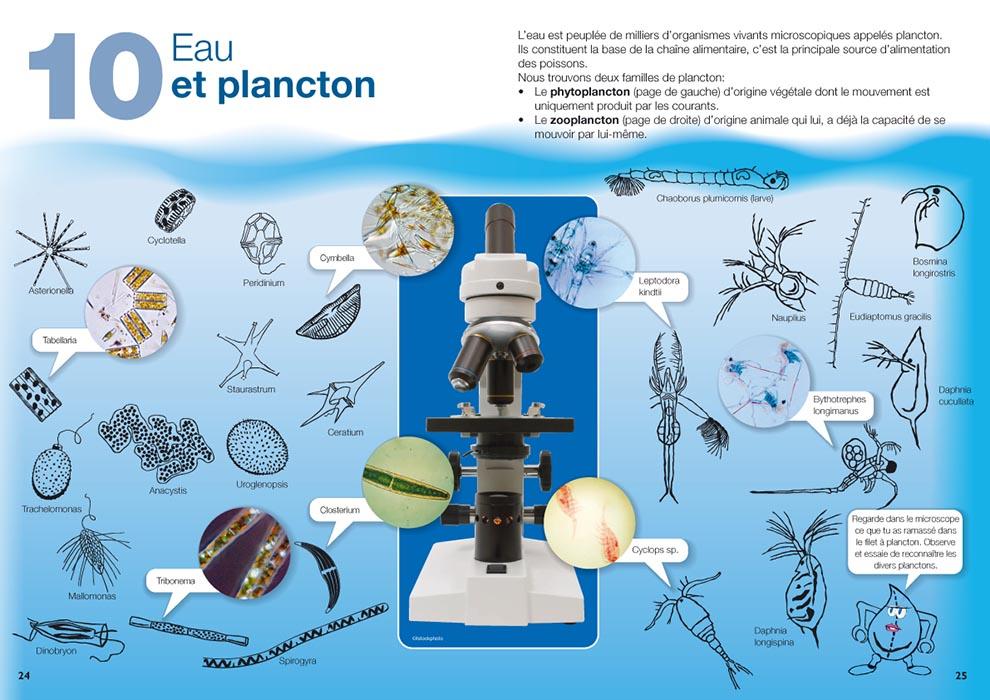 Brochure sur l'eau destinée aux écoliers, pages sur le plancton. Tristan Boy de la Tour, graphiste Lausanne
